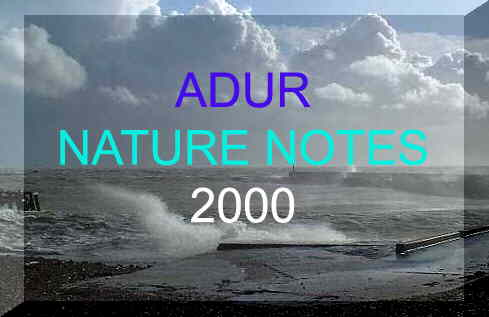 Link to Adur Nature Notes 2000