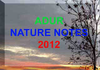 Link to the            Adur 2012 Nature Notes pages