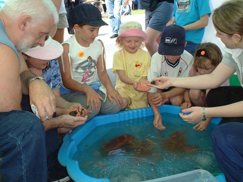 Len Nevell was in charge of the Living Animals display including live Lobsters