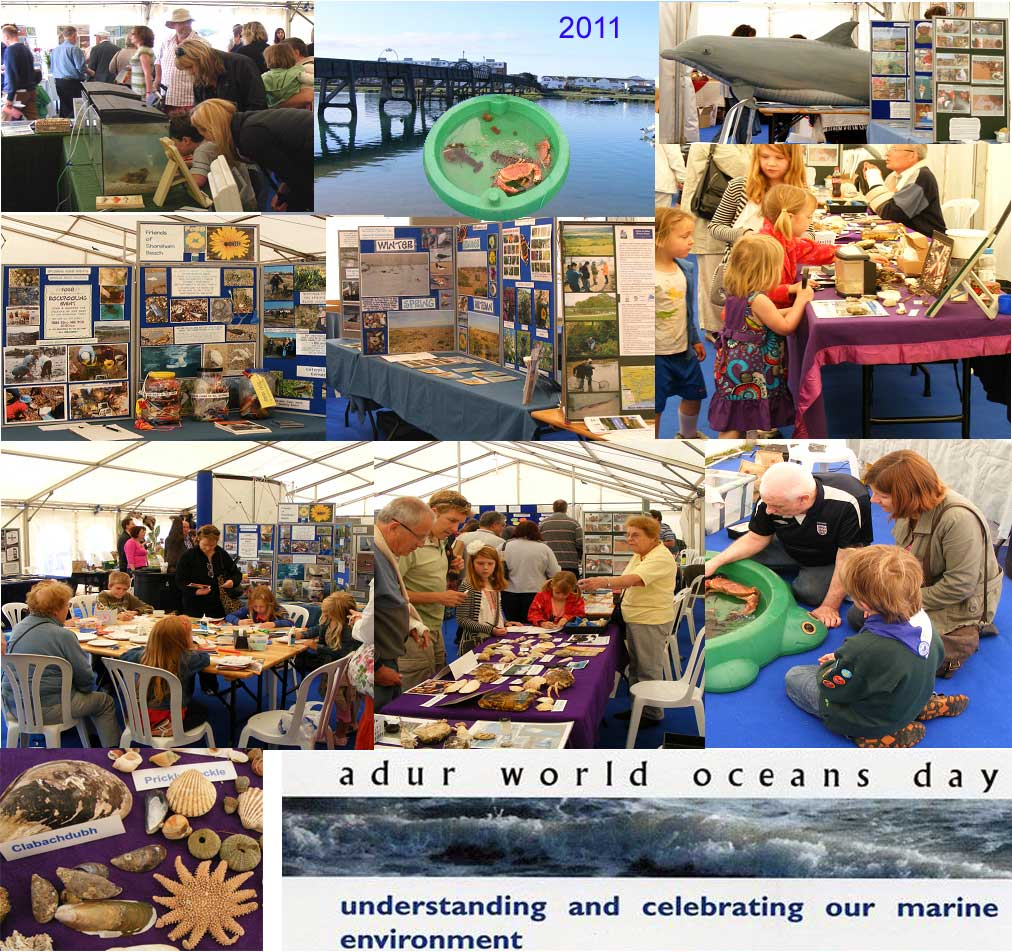 Links to the Adur World Oceans Day Blogspot for more photographs