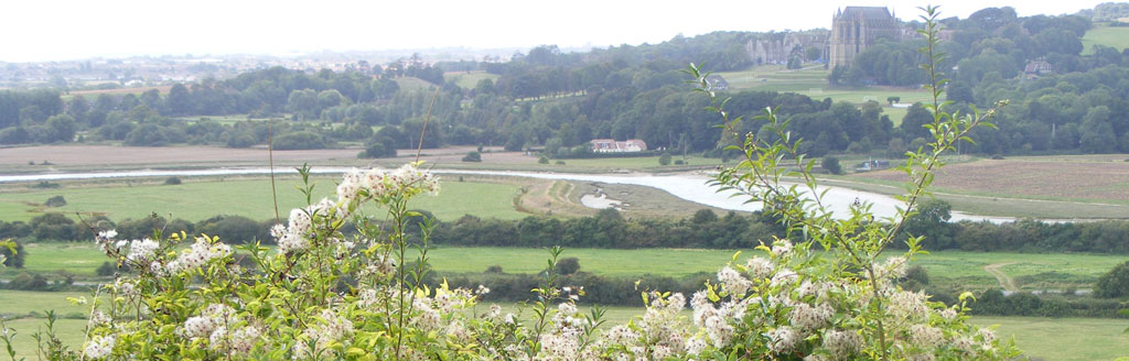 Lower River Adur Valley north of Old Shoreham with Clematis in the foreground and Lancing College Chapel on the west side of the estuary
