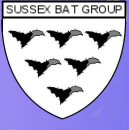 Link to the Sussex Bat Group web pages