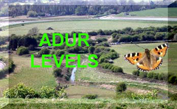 Link to the Adur Levels habitats page