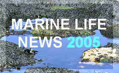Link to the Marine Luife News of the NE Atlantic including around the British Isles