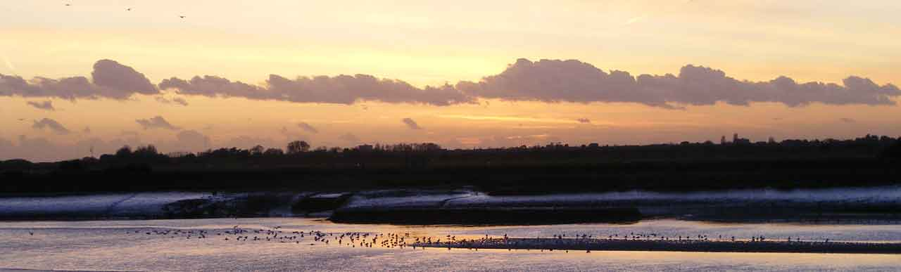 River Adur Mud Flats