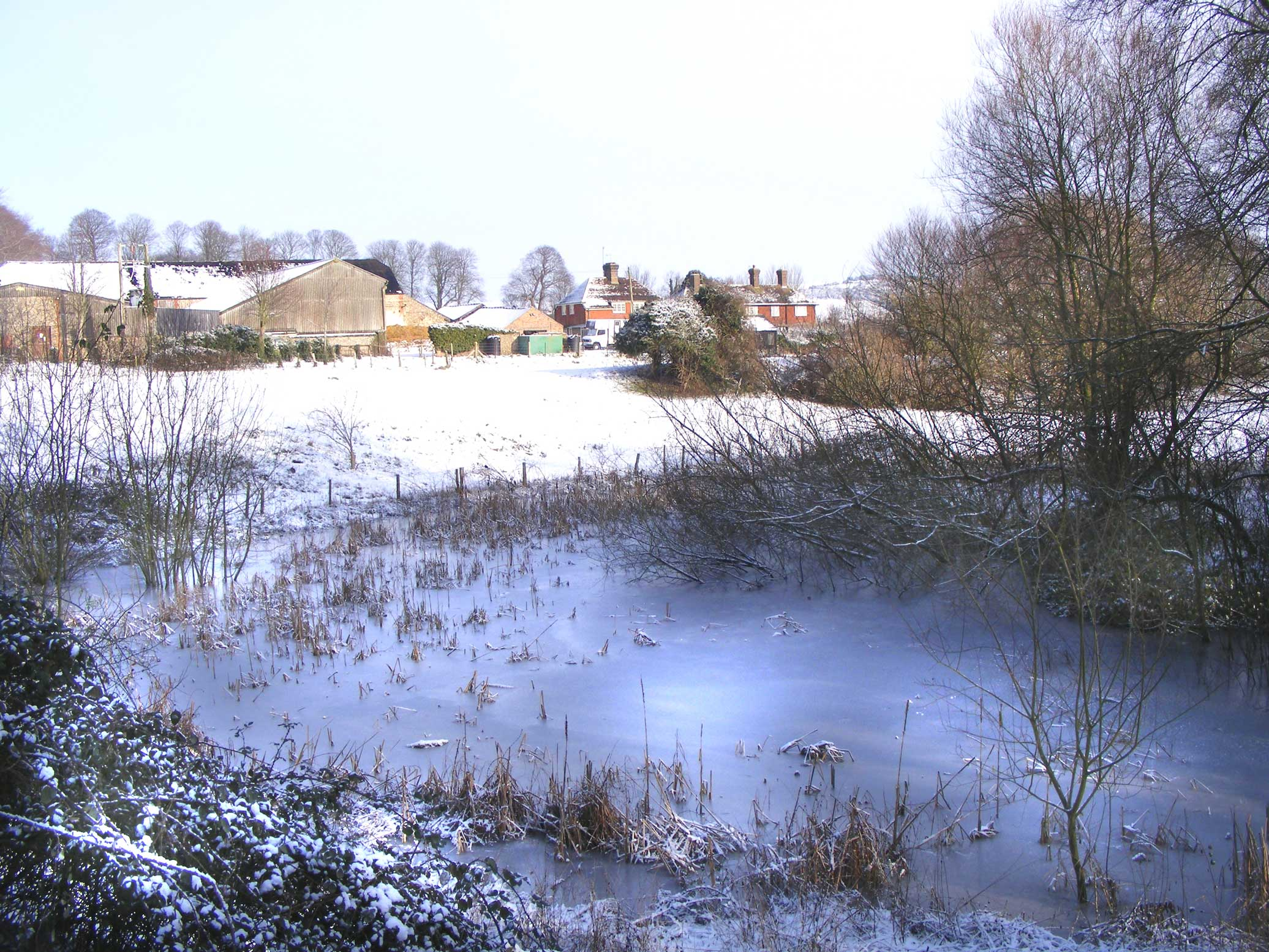 Lancing College Farm Pond