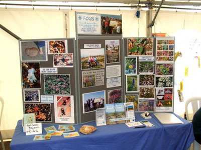 Friends of Shoreham Beach Display