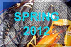Spring 2012 News Reports (Link)
