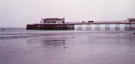 Worthing Pier and beach                   (Photograph by Andy Horton.)
