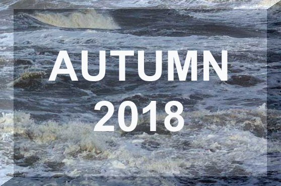 Link to Autumn 2018 Reports