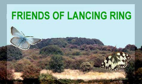 Friends of Lancing Ring (Link)