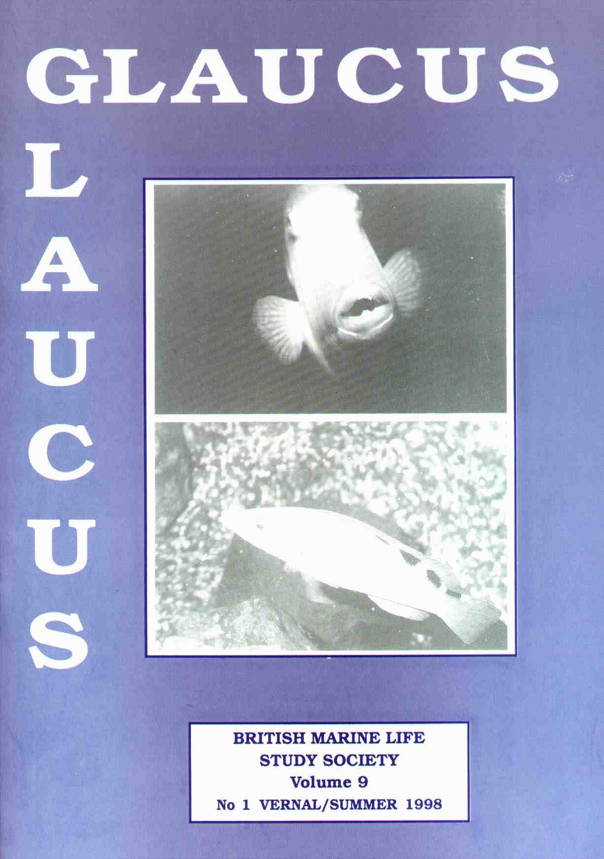 Glaucus Front Cover (Summer)