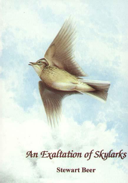 STEWART BEER's ... Skylark Books