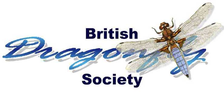 British Dragonfly Society Link