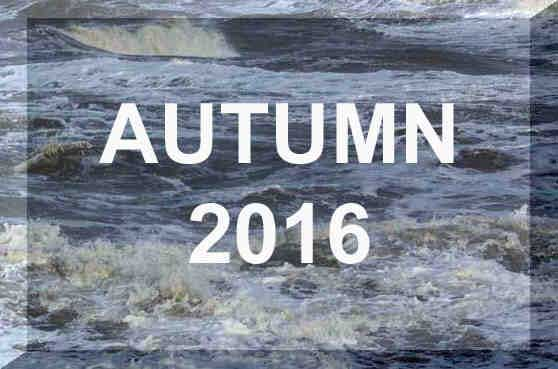 Link to Autumn 2016 Reports