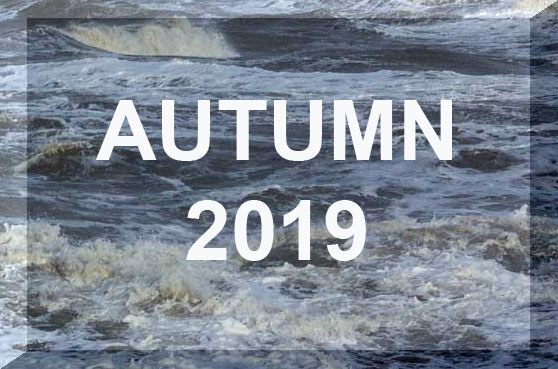 Link to Autumn 2019 Reports