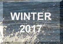 Link to WINTER 2017 Reports